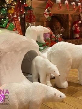 Медведи белые+берлога