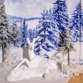 Frozen  - фото 8