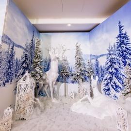 Frozen  - фото 9