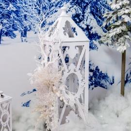 Frozen  - фото 10
