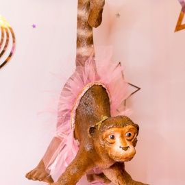 Magic Circus - фото 7