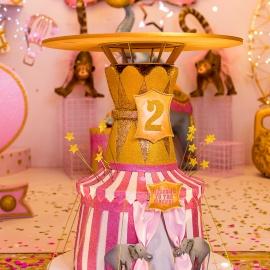 Magic Circus - фото 8
