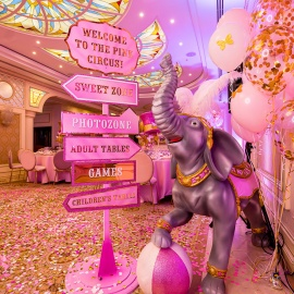 Magic Circus - фото 27