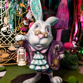 Alice in wonderland - фото 18