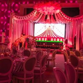 Pink&Gold Circus - фото 17