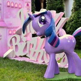 My Little Pony  - фото 9