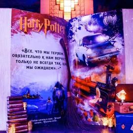 Harry Potter Birthday - фото 10