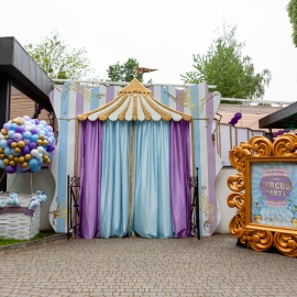 Fantastic Circus Show - фото 2
