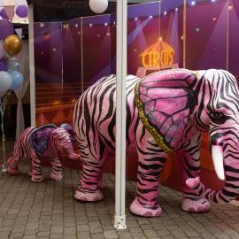 Fantastic Circus Show - фото 38