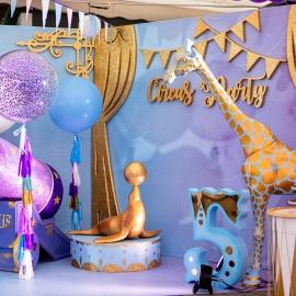 Fantastic Circus Show - фото 21