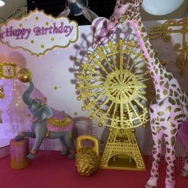 Pink&Gold Circus - фото 9