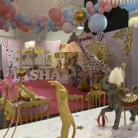 Pink&Gold Circus - фото 15