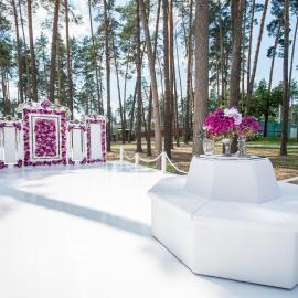 Зеркальная свадьба - фото 5