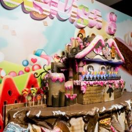 Чарли Шоколадная Фабрика  - фото 23