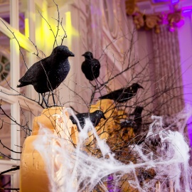 Halloween  - фото 9